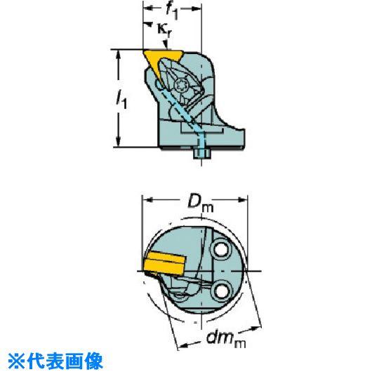 ■サンドビック コロターンSL コロターンRC用カッティングヘッド  〔品番:570-DTFNL-80-16〕[TR-5632781]