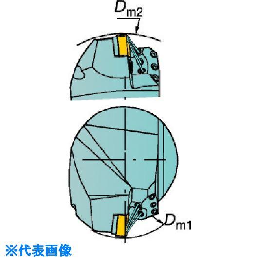 ■サンドビック コロマントキャプト T-MAX P用HPカッティングヘッド〔品番:C8-PCLNR-55080-19HP〕[TR-5687179]