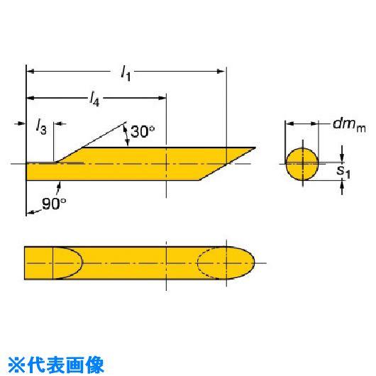 ■サンドビック コロターンXS 小型旋盤インサートバー 1025 1025 〔品番:CXS-06B090-15-6230R〕[TR-5696437]