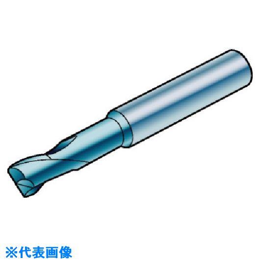 ■サンドビック コロミルプルーラ 超硬ソリッドエンドミル 1610〔品番:R216.24-10030GAP10G〕[TR-5739845]