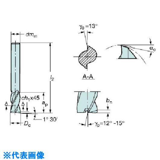 ■サンドビック コロミルプルーラ 超硬ソリッドエンドミル H10F〔品番:R216.42-10030-AK19A〕[TR-5745381]