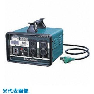 ■日動 低圧24V用降圧トランス  〔品番:STB-EK100DS〕[TR-7307446]【個人宅配送不可】