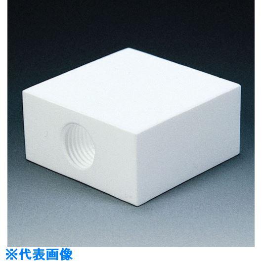 ■フロンケミカル フッ素樹脂(PTFE)フィルターメネジ角タイプ RC1/4  〔品番:NR1310-001〕[TR-7353146]