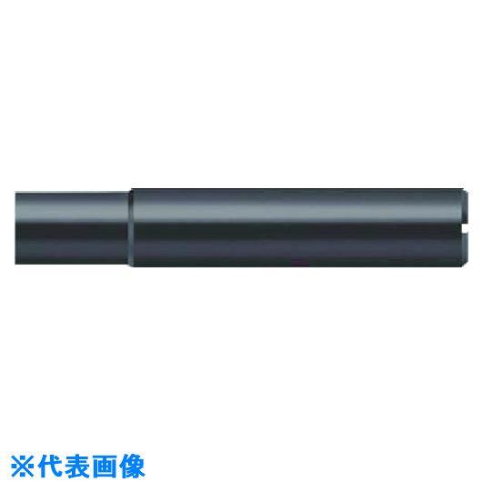 ■プロトティップ 20ヘッド用シャンク タイプC 180MM  〔品番:AK610.Z32.E20.073〕[TR-7360436]