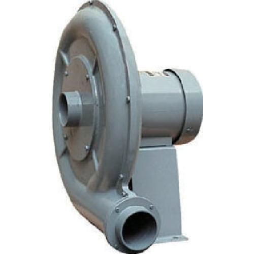 ■淀川電機 高圧ターボ型電動送風機DH2TL〔品番:DH2TL〕[TR-7549351 ]【送料別途お見積り】