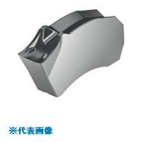 ■ワルター 溝入れチップ WSM43S《10個入》〔品番:SX-2E200N02-CF6〕[TR-8025437×10]