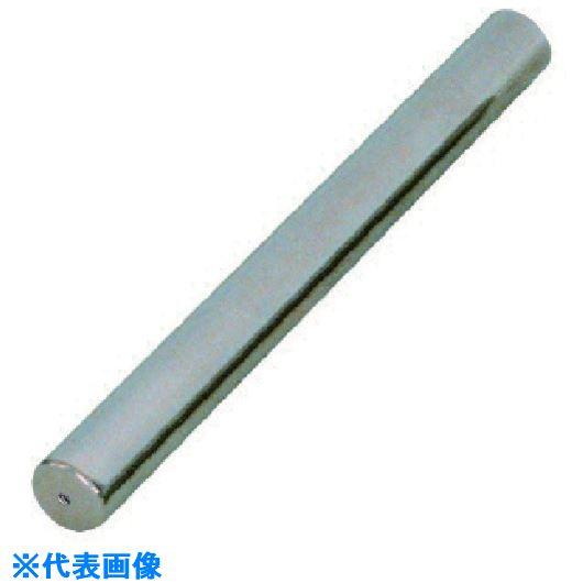 ■カネテック 耐熱高磁力マグネット棒 タップ穴付 直径25MM×全長244MM〔品番:PCMB2-T25〕[TR-8085721]【個人宅配送不可】