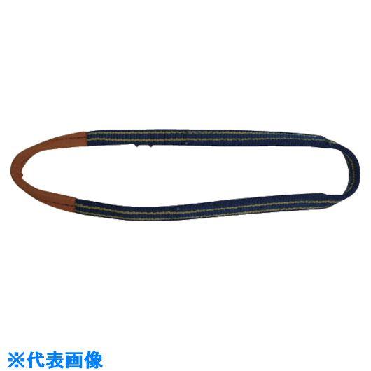 ■シライ シグナルスリング SG4N エンドレス形 幅100mm 長さ2.0m〔品番:SG4N-100X2.00〕[TR-8170380]