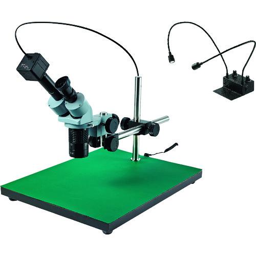 ■HOZAN 実体顕微鏡  〔品番:L-KIT542〕掲外取寄[TR-8231035]