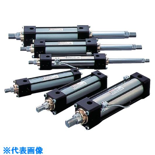 ■TAIYO 油圧シリンダ  〔品番:100H-2R2SD40BB300-ABAH2-K〕[TR-8392136]