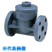 ■アサヒAV スイングチェックバルブ HI-PVC/EPDM 10K15A〔品番:VSCIEF1015R〕[TR-8506836]