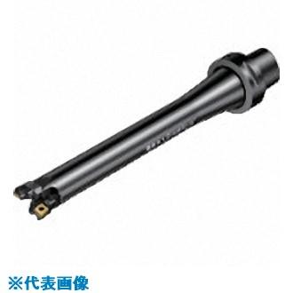 ■サンドビック コロボアBR20 サイレントツール カッティングユニット  〔品番:BR20D-45CC09F-C6L〕[TR-8689659]