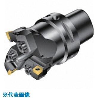 ■サンドビック コロボアBR30 カッティングユニット〔品番:BR30-70CC12F-C5〕[TR-8689745]