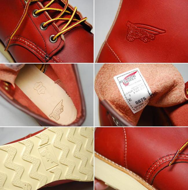 红翼 (8875) (红翼)