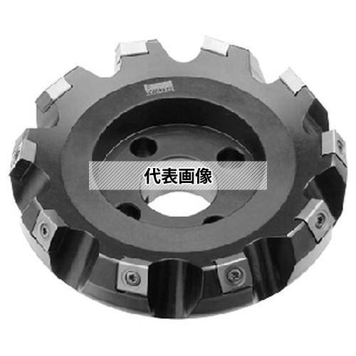 オーエスジー OSG-WALTER 鋳鉄用重切削加工用カッタ F2260 100XSLX6 (8075495)