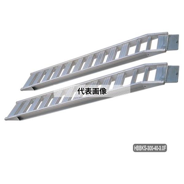 長谷川工業 skyladder LS-59 LS-59 (17288)[送料別途お見積り]