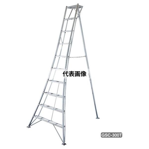 長谷川工業 2連はしご HD2 HD2-2.0-84 (17269)[送料別途お見積り]