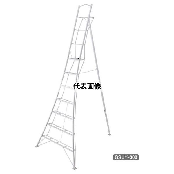 長谷川工業 2連はしご HE2 HE2-2.0-81 (16989)[送料別途お見積り]