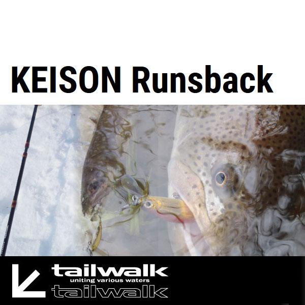 【テイルウォーク】鮭鱒 (ケイソン) ランズバック [ スピニングモデル ] S63M
