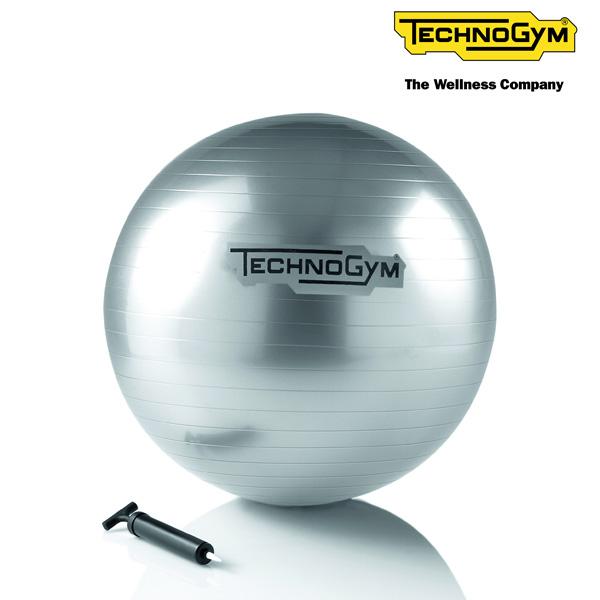 インテリアの邪魔をしないシンプルな高品質バランスボール テクノジム バランスボール(55cm) WELLNESS BALL 【送料無料】【メーカー直送品】 [Technogym]