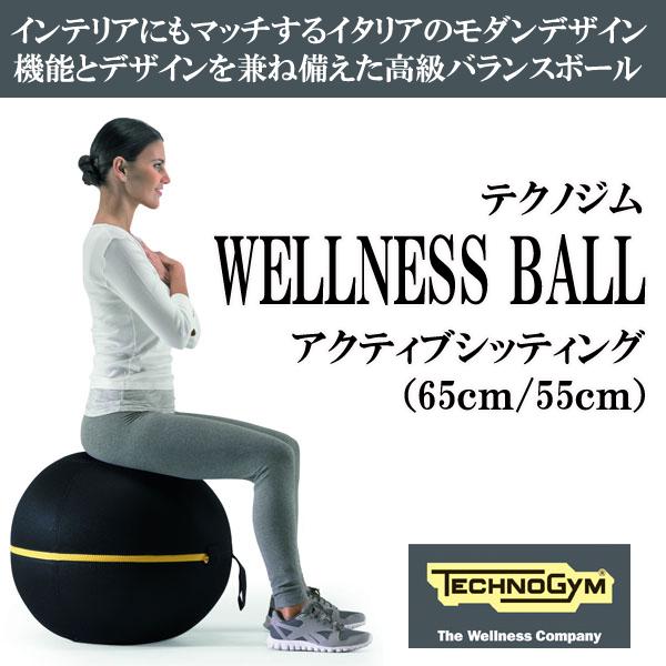 テクノジム アクティブシッティング バランスボールチェア(55cm) WELLNESS BALL 【予約受付中/10月中旬発送予定】【送料無料】 [Technogym]