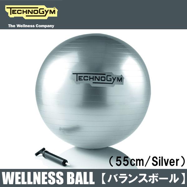 テクノジム バランスボール(55cm) WELLNESS BALL 【送料無料】 [Technogym]