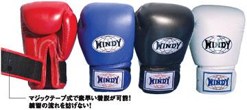 WINDY(ウィンディ)トレーニンググローブ(マジックテープ式)BGVH