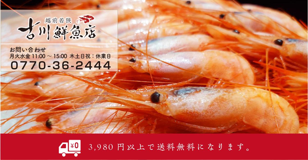 越前若狭 古川鮮魚店:産地直送!越前若狭の味覚をご堪能ください。獲れたてをお届けます。
