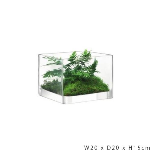 LSA International MODULAR[モジュラー] フラワーベース 花瓶 クリア ガラス 高さ15cm※メーカーより直接お届けするため、お買上げ合計金額にかかわらず別途送料を設定しております。【メーカー直送品のため、代引き/ラッピング/同梱不可】