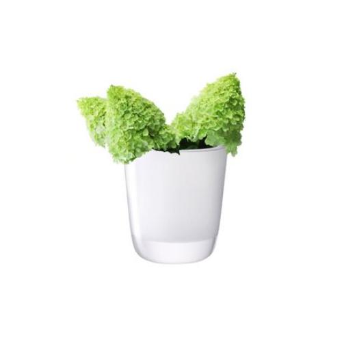 LSA International OTTO[オットー] フラワーベース 花瓶 ホワイト ガラス 高さ27cm※メーカーより直接お届けするため、お買上げ合計金額にかかわらず別途送料を設定しております。 【メーカー直送品のため、代引き・ラッピング・同梱不可】