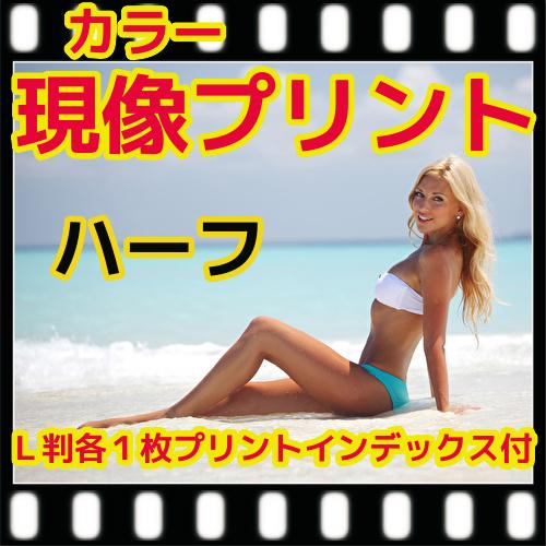 ハーフ カラー フィルム 現像 L版 100%品質保証! 各1枚 プリント ショップ 写真 ネガ 35ミリ 同時プリント フジカラー インデックス 純正現像液