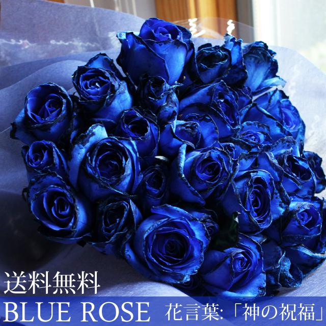 青バラ花束30本