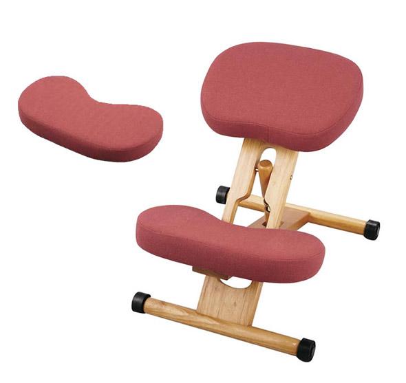 【あす楽対応】プロポーションチェア ローズ オプションパーツ付セット 姿勢がよくなる椅子