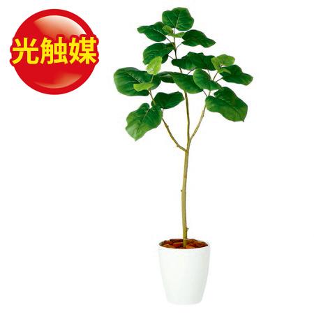 スーパーSALE10%OFF対象 人工観葉植物 光触媒 ウンベラータFST120(器タイプ:RP-225)98917《 造花(人工観葉植物) 人工観葉《2018tokyo》