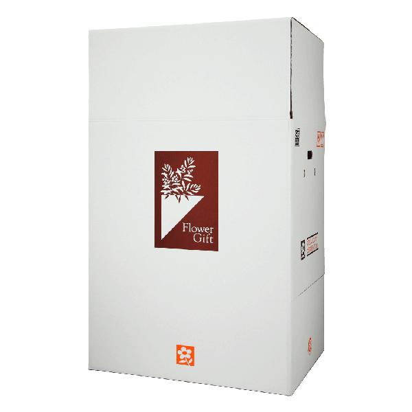 ◆◇送料無料アイテム◆◇ サイズを2段階に調節できる箱です。 宅配ボックス S-Box-16(大型胡蝶蘭5本立等、大型観葉植物用) ×8組 花材・資材 配送ボックス