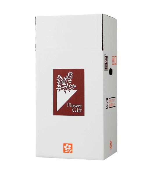 宅配ボックス S-Box-3(小型アレンジメント、4~5寸鉢物用) ×30組 花材・資材 配送ボックス 2020si
