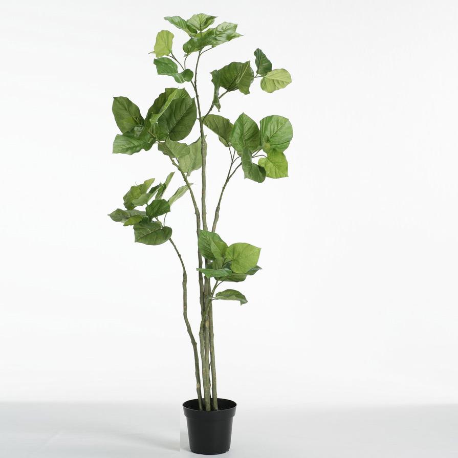 ずっと気になってた 開店祝 観葉植物 新築祝 人工観葉植物 敬老の日 ポットカバー(L)付 のフロロ 送料無料:ラッピング P4589 フェイクグリーン ランドセル 造花 大型 観葉植物 ウンベラータ おしゃれ 2020vk イミテーション 観葉植物 1.65m インテリア インテリア-花・観葉植物