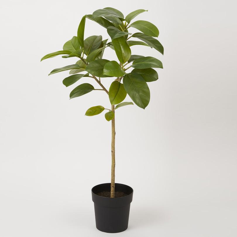 観葉植物 P4827 フィカスソフィアポット 1.1m ポットカバー(L)付 2020vk 人工観葉植物 フェイクグリーン イミテーション インテリア 開店祝 新築祝 敬老の日 造花 大型 観葉植物 おしゃれ 観葉植物 インテリア 送料無料