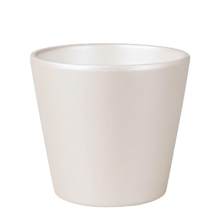 花資材を卸価格で買えるフロロラッピング 陶器 シンプルコンポートS ホワイト 24個セット SS101-WH 2020green 鉢 ポット アレンジ ギフト ランキングTOP10 グリーン お祝い 花器 シック 新商品 ディスプレイ フラワー