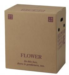 120サイズ 宅配ボックス PS-106(大型アレンジメント4~5寸鉢物) @410円×30組 花材・資材 配送ボックス 2020hos