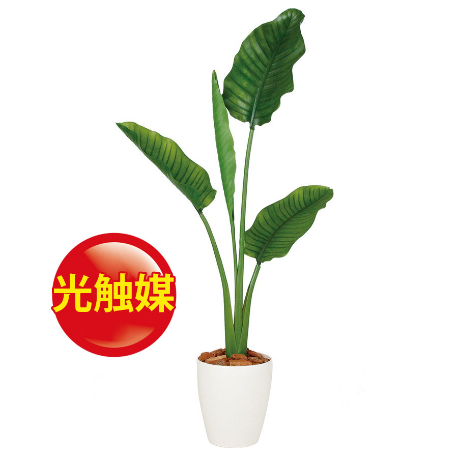 人工観葉植物  光触媒 ストレリチア・オーガスタ 130 (器:RP-225) 99169 |フェイクグリーン イミテーション インテリア オフィス 店舗 造花  観葉植物 大型 観葉植物 おしゃれ 観葉植物 インテリア 《2018ds》