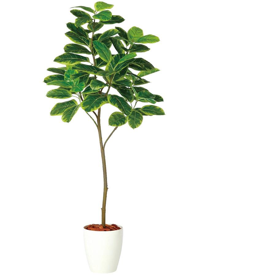 スーパーSALEセール対象 人工観葉植物 アルテシマ FST180(器:RP-265)98929|フェイクグリーン イミテーション インテリア 開店祝 新築祝 敬老の日 造花 観葉植物 大型 観葉植物 おしゃれ 観葉植物 インテリア 《2018ds》