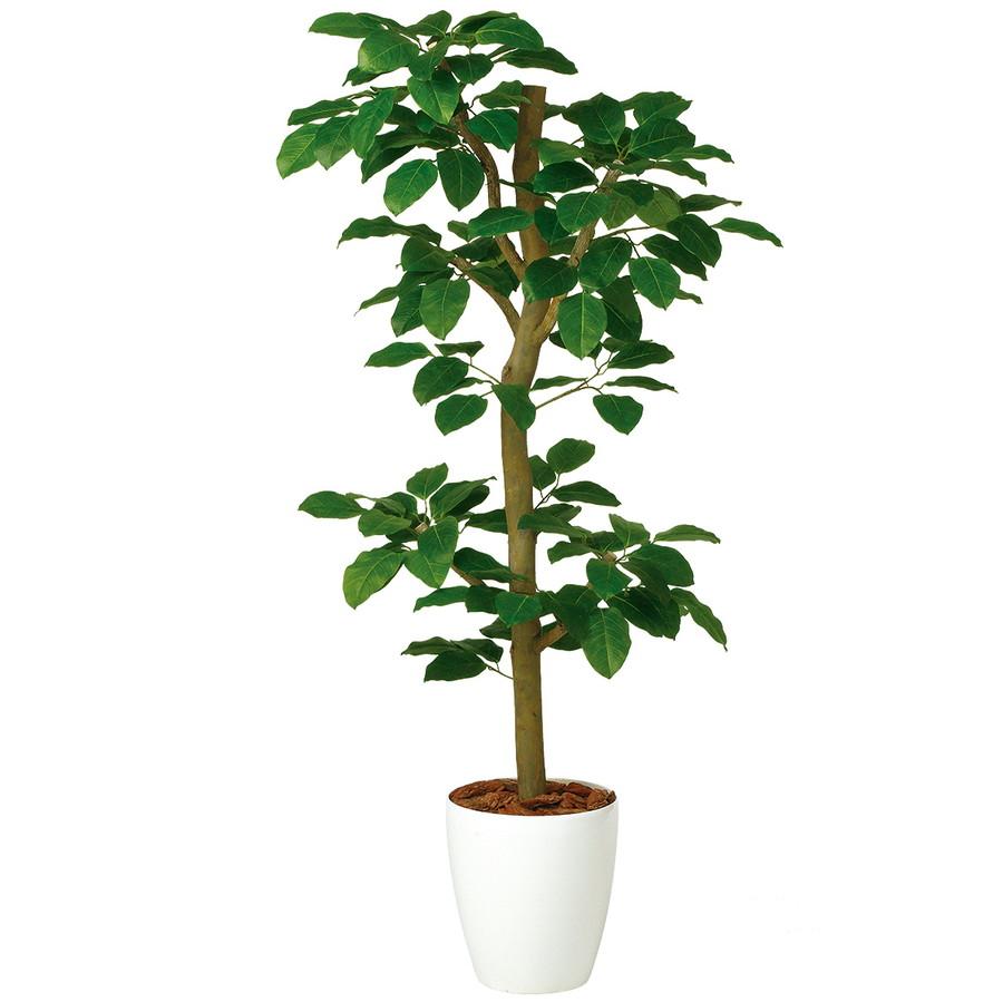スーパーSALEセール対象 人工観葉植物 ベンガルボダイジュ N-style150(器:RP-265)99112 フェイクグリーン イミテーション インテリア 開店祝 新築祝 敬老の日 造花 観葉植物 大型 観葉植物 おしゃれ 観葉植物 インテリア 《2018ds》