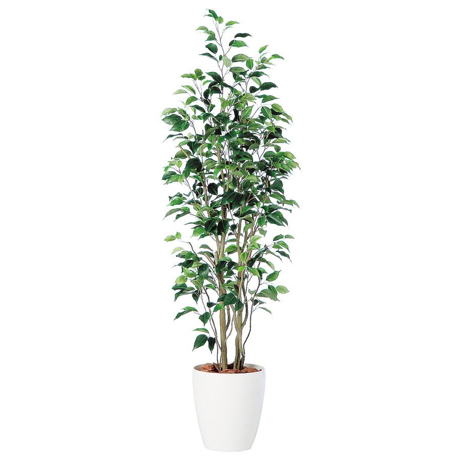 スーパーSALE10%OFF対象 人工観葉植物 ベンジャミン スリム FST150(器:RP-265)98649|フェイクグリーン イミテーション インテリア 開店祝 新築祝 オフィス 造花 観葉植物 大型 観葉植物 おしゃれ 観葉植物 インテリア 《2018ds》