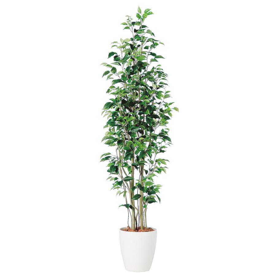 スーパーSALE10%OFF対象 人工観葉植物 ベンジャミン スリム FST180(器:RP-265)98647|フェイクグリーン イミテーション インテリア 開店祝 新築祝 オフィス 造花 観葉植物 大型 観葉植物 おしゃれ 観葉植物 インテリア 《2018ds》