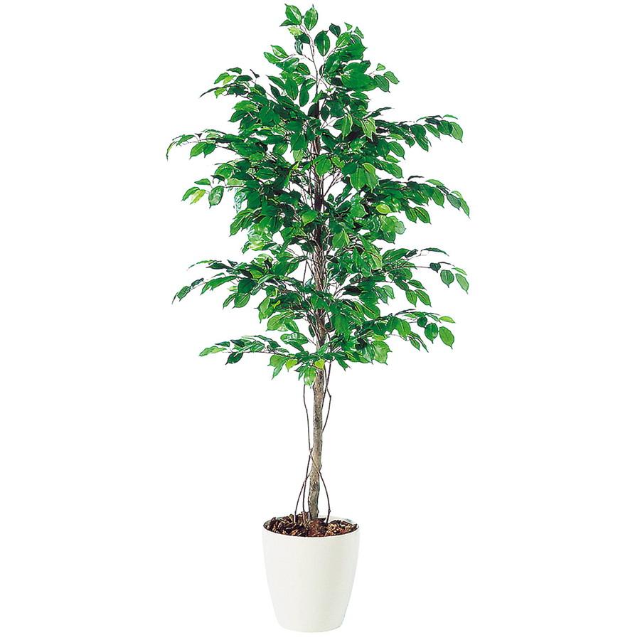 スーパーSALE10%OFF対象 人工観葉植物 フィッカスベンジャミナ 180(器:RP-300)98518|フェイクグリーン イミテーション インテリア 開店祝 新築祝 オフィス 造花 観葉植物 大型 観葉植物 おしゃれ 観葉植物 インテリア 《2018ds》