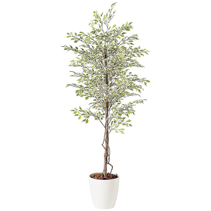 スーパーSALEセール対象 人工観葉植物 ベンジャミナスターライト 200(器:RP-300)98523|フェイクグリーン イミテーション インテリア 開店祝 新築祝 オフィス 造花 観葉植物 大型 観葉植物 おしゃれ 観葉植物 インテリア 《2018ds》