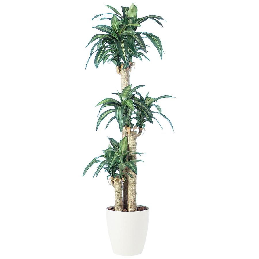 スーパーSALEセール対象 人工観葉植物 マッサンゲアナ 170(器:RP-300)91261|フェイクグリーン イミテーション インテリア 開店祝 新築祝 オフィス 店舗 造花 観葉植物 大型 観葉植物 おしゃれ 観葉植物 インテリア 《2018ds》