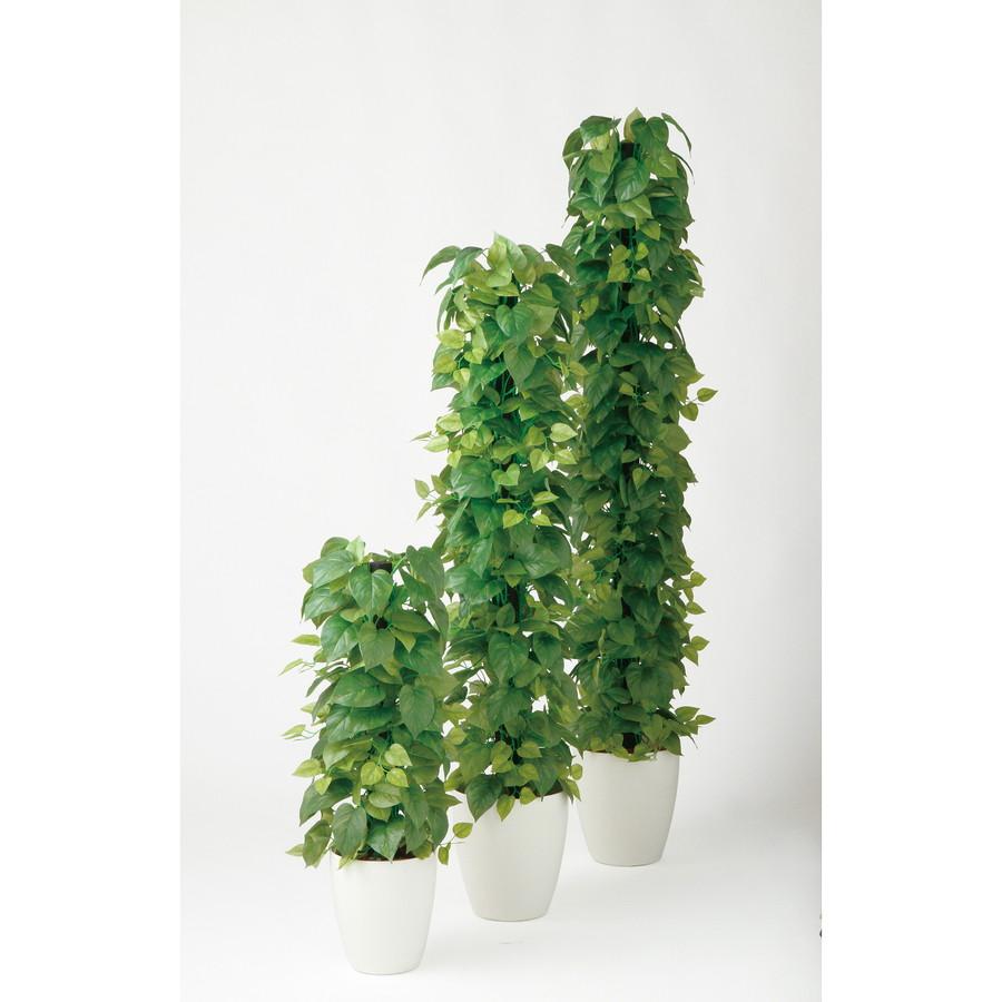 スーパーSALEセール対象 人工観葉植物 ライムポトス ヘゴ GREEN 150 (器:RP-265) 99085|フェイクグリーン イミテーション インテリア 開店祝 新築祝 オフィス 店舗 造花 観葉植物 大型 観葉植物 おしゃれ 観葉植物 インテリア 《2018ds》