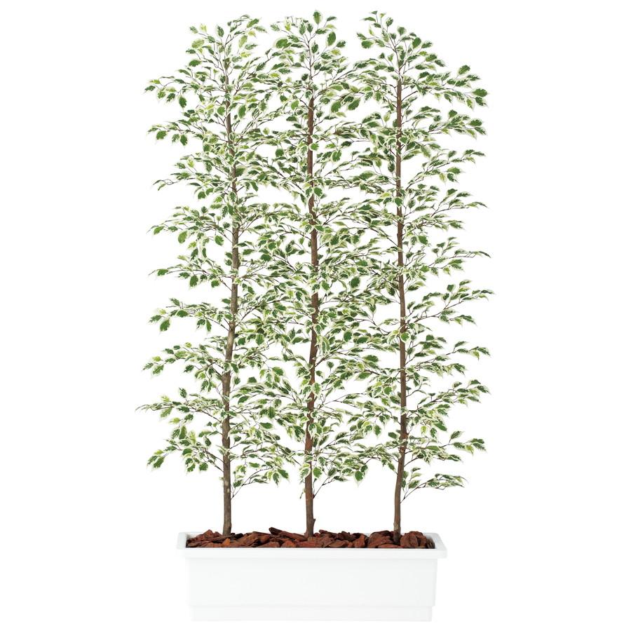 スーパーSALEセール対象 人工観葉植物 ベンジャミナ スターライト パーテション 150 (器:ガーデンペット) 91614|フェイクグリーン パーテション インテリア オフィス 観葉植物 大型 観葉植物 おしゃれ 観葉植物 インテリア 《2018ds》